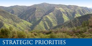 TCRCD Strategic Priorities